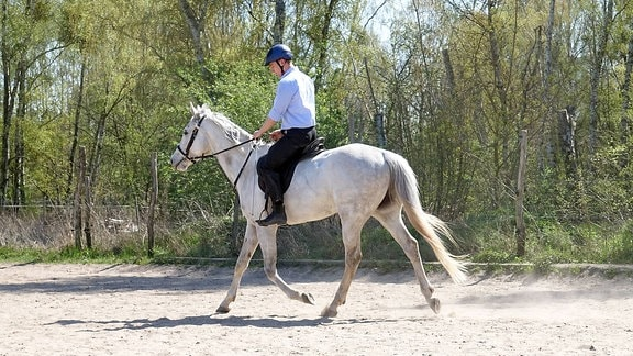 Junger Mann trainiert mit seinem Pferd auf einem Reitplatz.