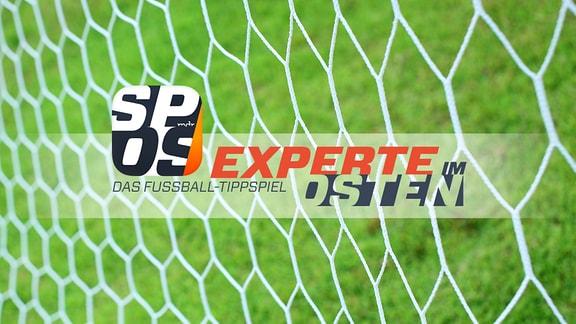 Experte im Osten - Das Fußball-Tippspiel