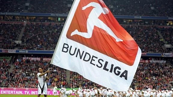 Flagge mit dem DFL-Logo