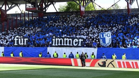 Fans aus Magdeburg halten Transparente mit der Aufschrift: für immer fcm