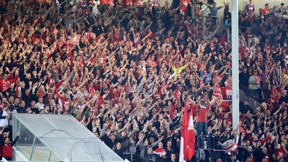 Fans von Energie Cottbus