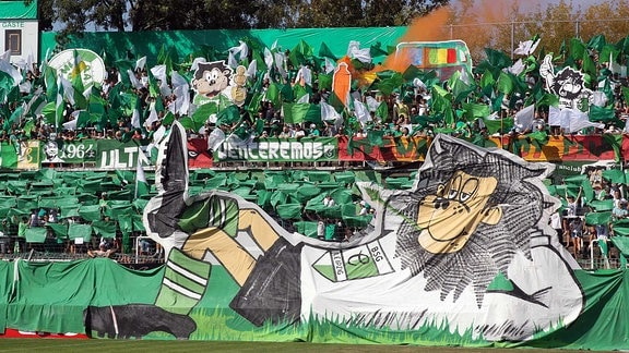 1. Runde des DFB-Pokals: BSG Chemie Leipzig vs. SSV Jahn Regensburg am 19.08.2018 im Alfred-Kunze-Sportpark, Leipzig Leutzsch. Im Bild: Fans, Fanblock, Ultras, Norddamm, Choreografie, Fahnen, Traeumend im Gras, Loewe.