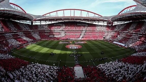 Benfica gegen Santa Clara Lissabon