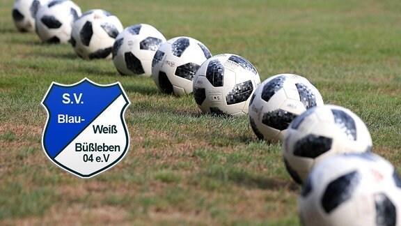 Logo SV Blau-Weiß Büßleben 04