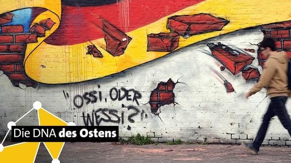 """Grafitti an Mauer mit Suschrift """"Ossi oder Wessi"""""""