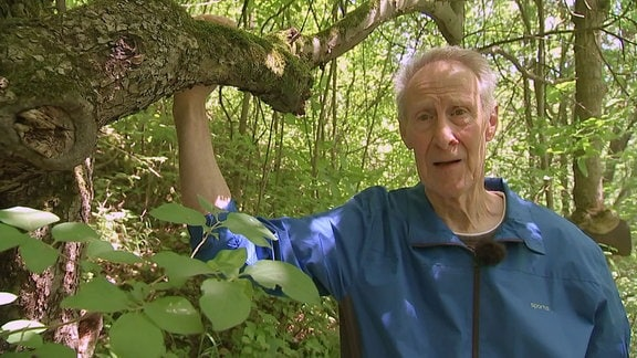 Ein Mann im Wald hält sich an einem Baum fest.