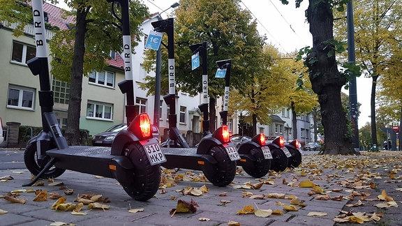 E-Roller des Anbieters Bird stehen auf einem Fußweg in der Windthorststraße in Erfurt