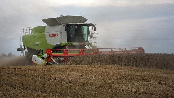 Ein Mähdrescher bei der Getreideernte in Ostthüringen