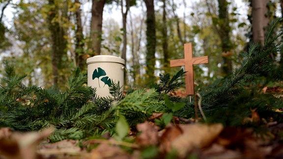 Urne und ein Holzkreuz stehen in einem Friedwald.