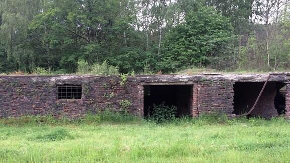 Ein zerfallenes Backsteingebäude des ehemaligen KZ-Außenlagers Ellrich-Juliushütte.