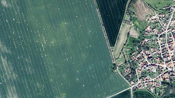 Luftbild Sachsenhausen
