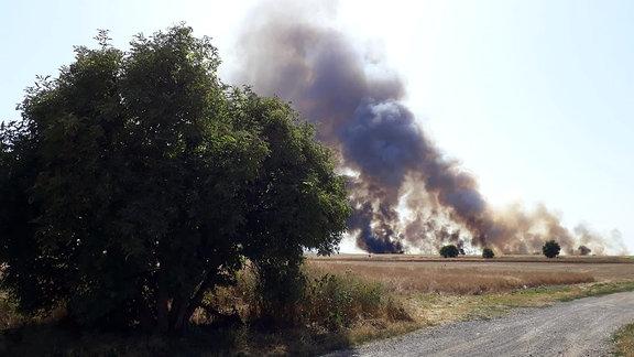 ein Feldweg, dahinter eine schwarze Rauchwolke