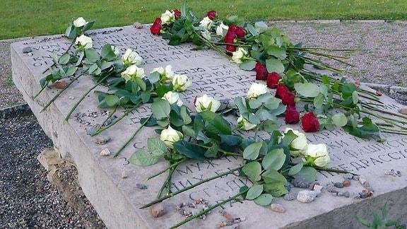 Rote und weiße Rosen liegen auf einer Steinplatte zum Gedenken an Opfer des Nationalsozialismus