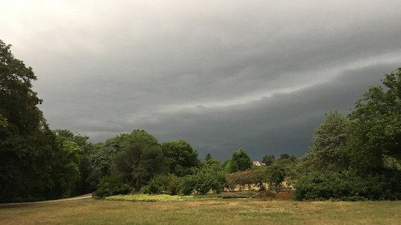 Ein dunkler Himmel, mit einer Regen- und Gewitterfront, davor eine Wiese