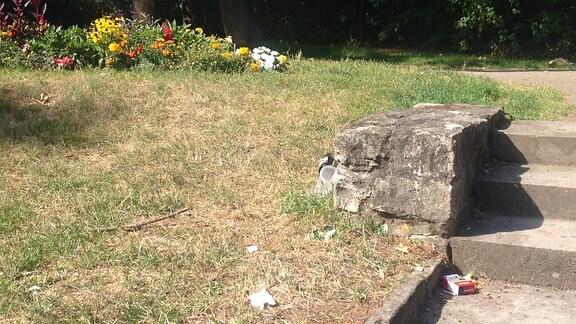 Müll im Stadtpark Erfurt