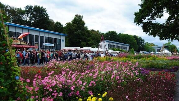 Zahllose Menschen laufen an einem üppig bepflanzten Beet auf einem Park-Gelände entlang.