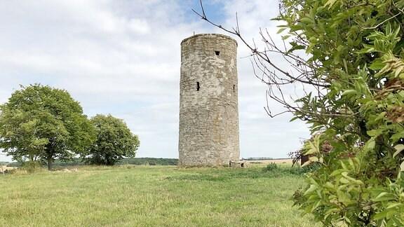 Ein Turm aus grauen Steinen auf einem Feld.
