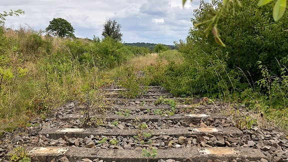 Schotter und Betonklötze werden von Gras überwuchert