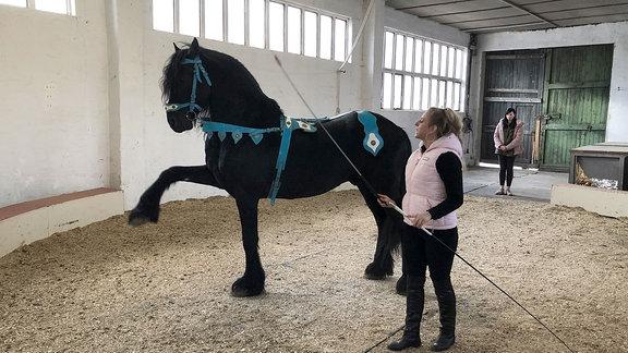 Eine Frau steht neben einem Pferd in einer Halle.