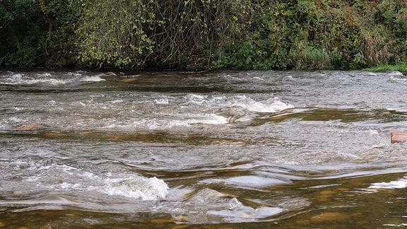 Fluss mit Stromschnellen.