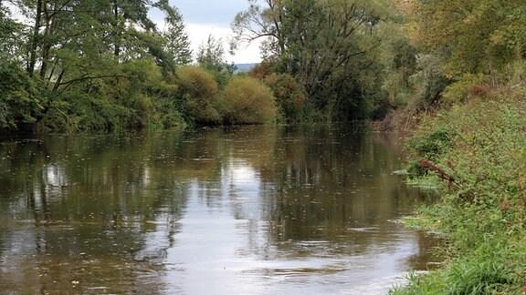 Ruhiger Fluß mit grünen Ufern und Bäumen an diesen.