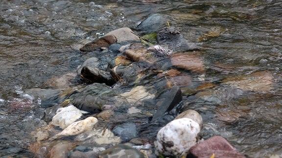 Wasser fliesst über den Flussgrund.