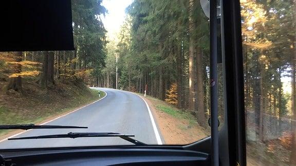 Ein Bus fährt eine Straße entlang durch einen Wald