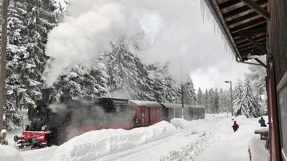 Dampflok fährt in den Bahnhof Rennsteig ein
