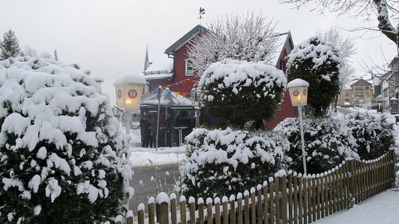 Schnee bedeckt Sträucher und Laternen vor einem Haus.
