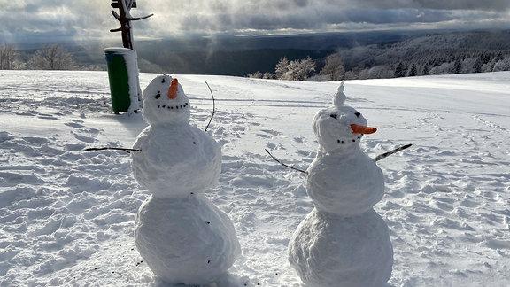 Zwei Schneemänner auf einer schneebedeckten Wiese.