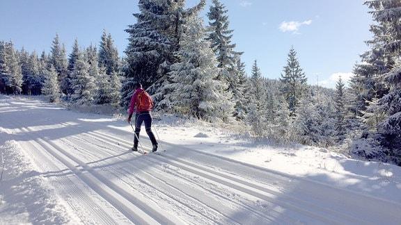 Eine Frau läuft auf Skiern einen Weg entlang. Überall liegt Schnee. Die Nadelbäume rundherum sind mit Schnee bedeckt. Der Himmel ist blau.