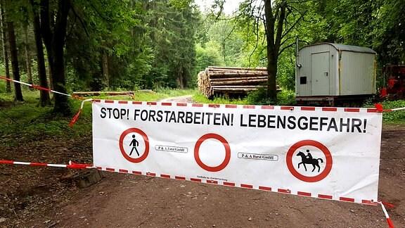 Ein großes Banner warnt Waldbesuchern vor dem Betreten von gesperrten Waldwegen