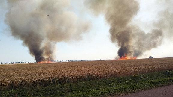 Ein Feld brennt und eine Rauchsäule steigt in den Himmel
