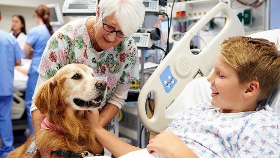 Ein Junge auf dem Krankenbett streichelt einen Hund.