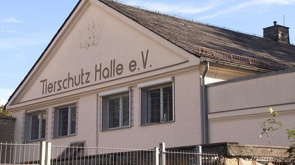 Das Tierheim Halle