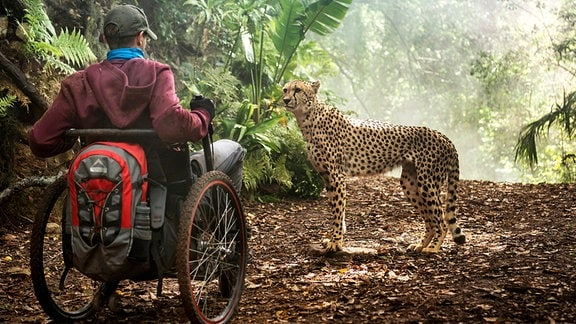Eine überraschende Begegnung: Plötzlich steht ein Leopard vor Tom (Kostja Ullmann)