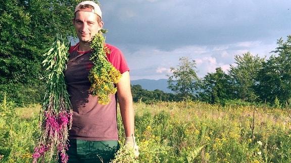 Das Geschäft mit Heilkräutern wird auf dem Balkan zunehmend lukrativ