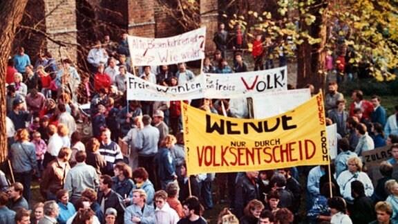 Demo gegen den Staat und die Politik, 1989 in Salzwedel.
