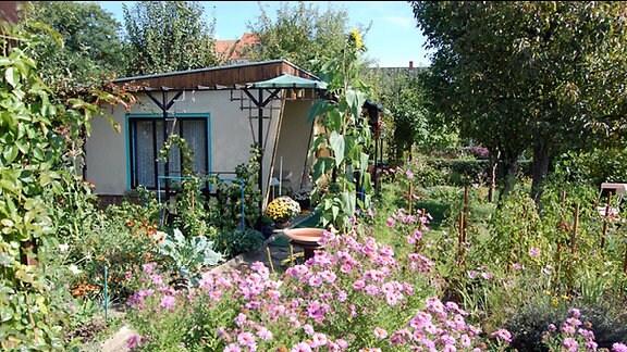 Akkurat angelegter Kleingarten mit genau eingeteilten Beeten und Pflanzen, Blumenrabatten und korrekt geschnittener Hecke