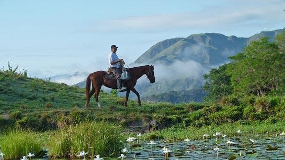Ein Reiter auf einem Pferd, im Hintergrund Berge