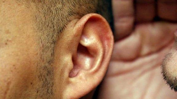 Ein Mann sagt einem anderen etwas ins Ohr