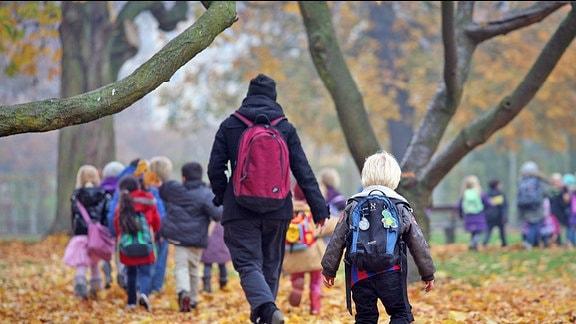 eine Kindergartengruppe auf laubbedeckten Waldwegen