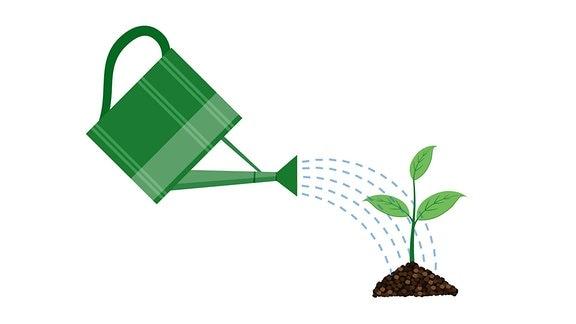 Illustration einer Gießkanne und einer Pflanze