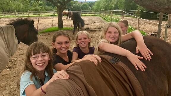 Fünf Mädchen haben ihre Hände auf den Rücken eines Pferdes gelegt und lachen in die Kamera hinein.