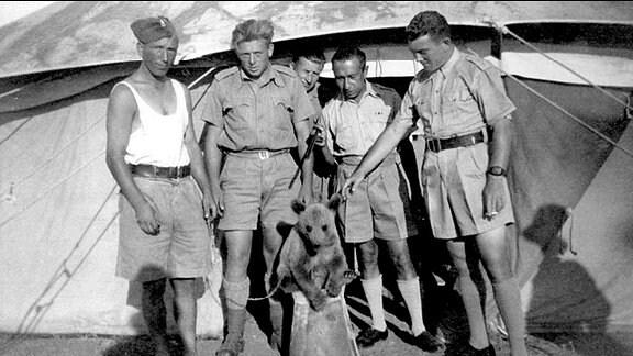 Ein kleiner Bär wird von einer Gruppe Polen gefunden und mitgenommen.