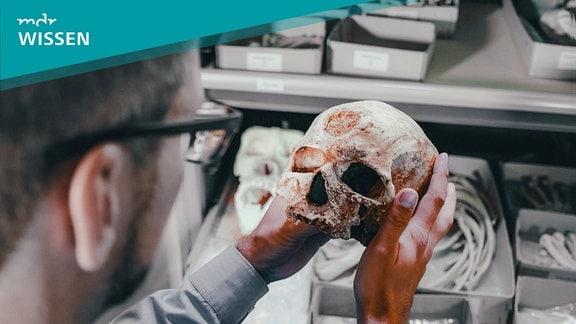 Mann hält einen Schädel in der Hand