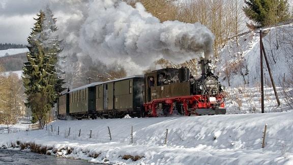 Preßnitztalbahn vor dem Haltepunkt Wildbach im Winter.