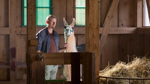 Alpaka Pedro hat heilende Kräfte. Das zumindest behauptet sein Besitzer Frank Hoffmann (Martin Gruber). Dem Aussteiger glaubt Tierärztin Susanne Mertens nicht, bis sie eines Besseren belehrt wird.