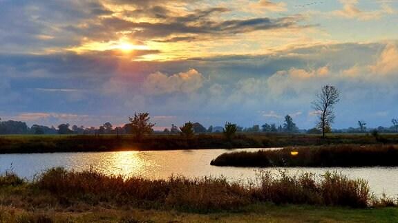 """Mit der Havel vor der Haustür hat Garz eine Menge Natur. Die Flusslandschaft """"Untere Havelniederung"""" ist das größte zusammenhängende Feuchtgebiet im Binnenland. Weit über 1000 Arten, wie Biber, Fischotter und Wildvögel lassen es sich hier gut gehen."""