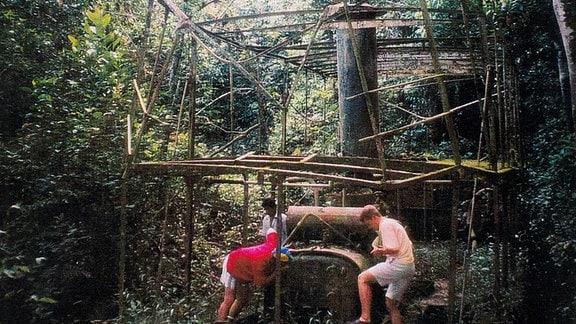 """Dieses Dampfschiff wurde von Touristen im peruanischen Urwald in einem Seitenarm des """"Madre de Dios"""" gefunden - und in Roßlau gebaut"""